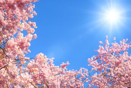 Frühlingszeit ist die Gesundheitszeit!