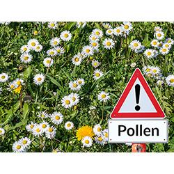ALLERGIE – der Pollenflug startet!
